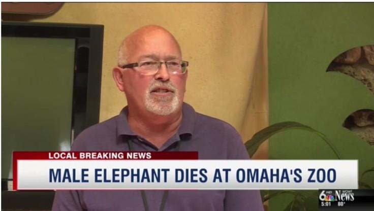 HD Elephant dies